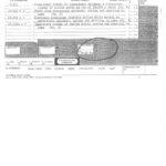 Robert Bell court papers-2